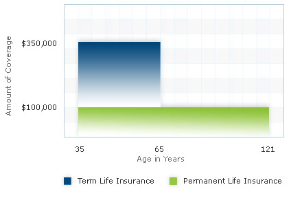Term Life Insurance Online Quote Gorgeous Combination Life Insurance Rate And Quotes  Usaa